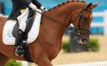equitazione_12