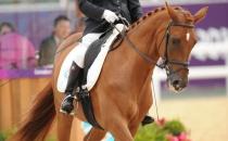 equitazione_16