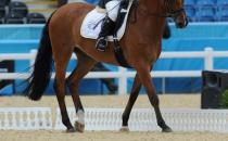 equitazione_36